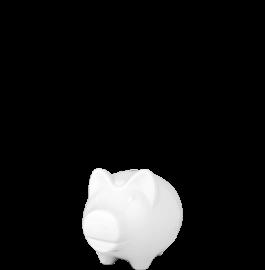 Schwein 3b s c